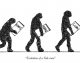 Evolution of a Yale Man